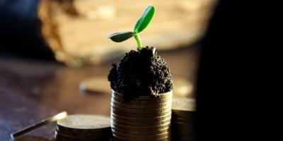 401(k) dividends